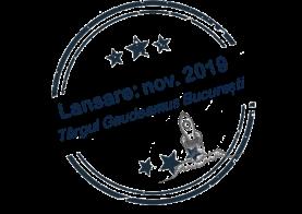 stamp lansare 2019